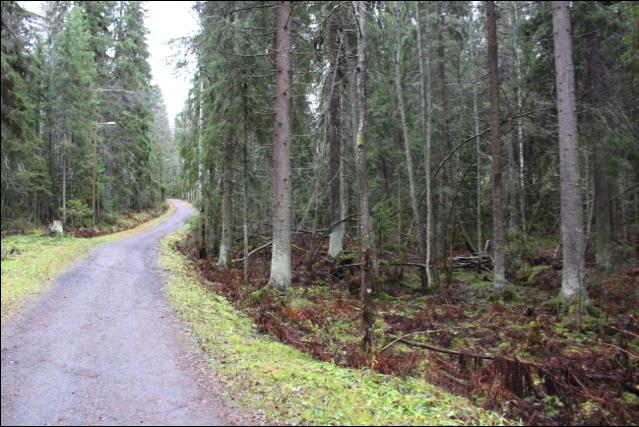 Finland Hiking